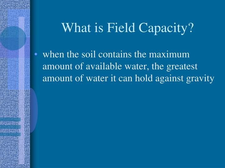 What is Field Capacity?