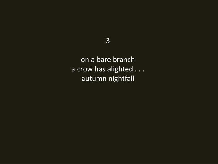 3 on a bare branch a crow has alighted autumn nightfall