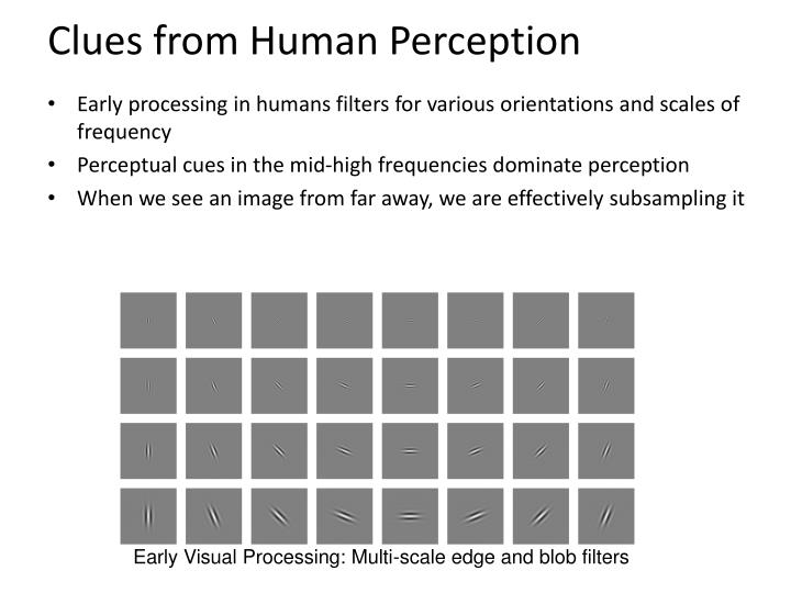 Clues from Human Perception