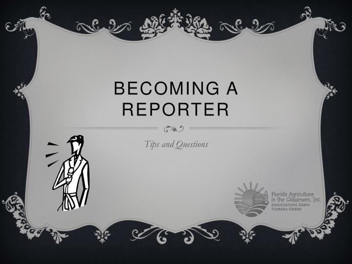 becoming a reporter n.