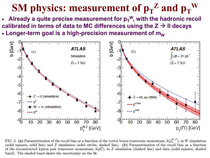 SM physics: measurement of