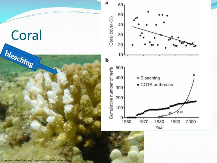 http://www.climateshifts.org/wp-content/uploads/2011/02/Bellwood-et-al-Fig-1.jpg