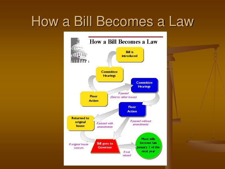 describe how a bill becomes a law essay