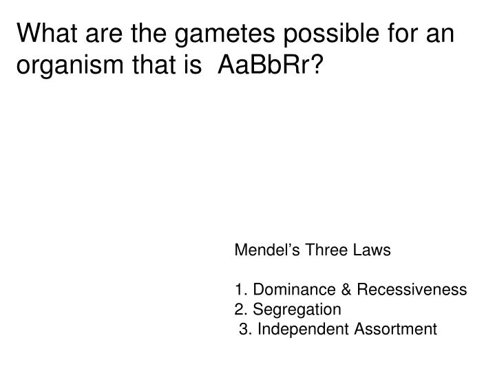 What are the gametes possible for an organism that is AaBbRr?