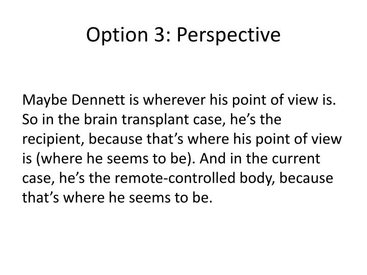 Option 3: Perspective
