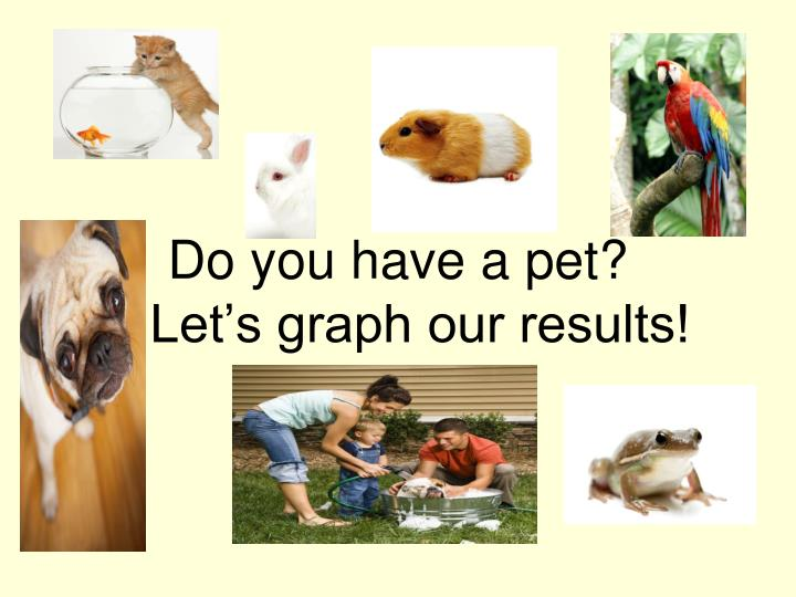 do you have a pet let s graph our results n.