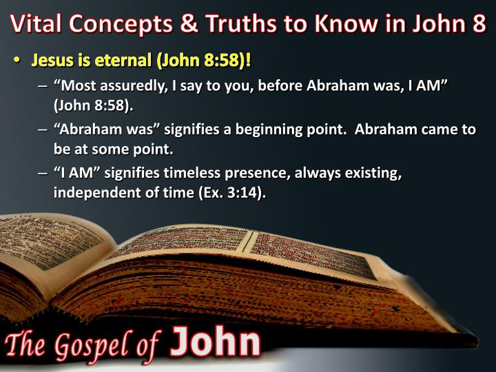 Vital Concepts & Truths to Know in John 8