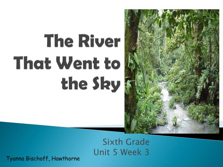 the river that went to the sky n.