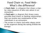 food chain vs food web what s the difference