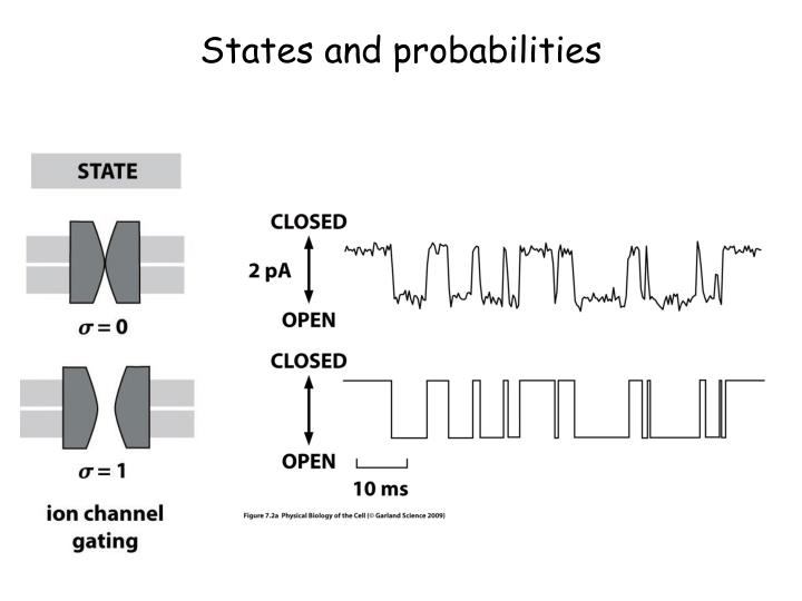states and probabilities n.