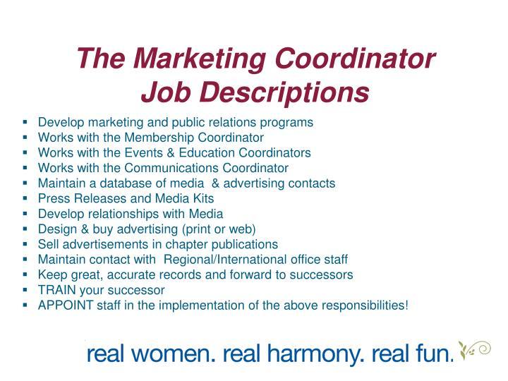 The Marketing Coordinator