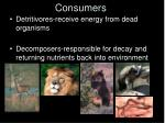 consumers1