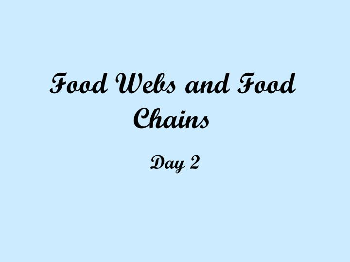 food webs and food chains n.