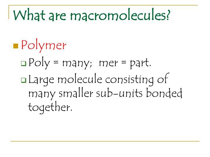 What are macromolecules?