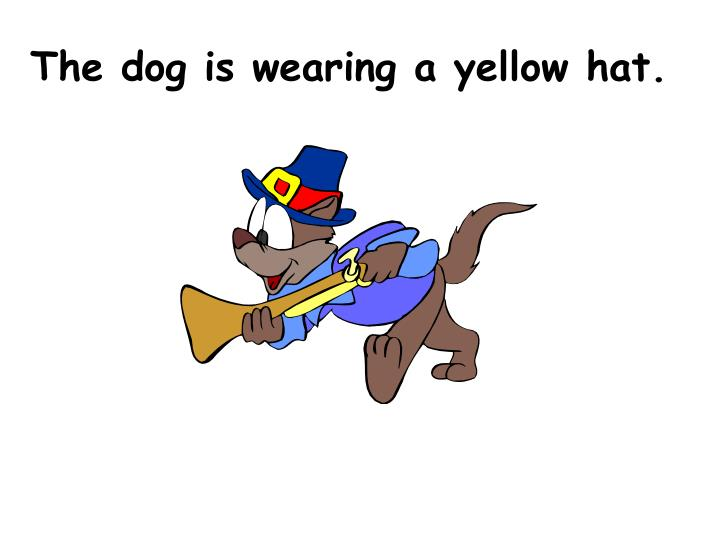 The dog is wearing a yellow hat