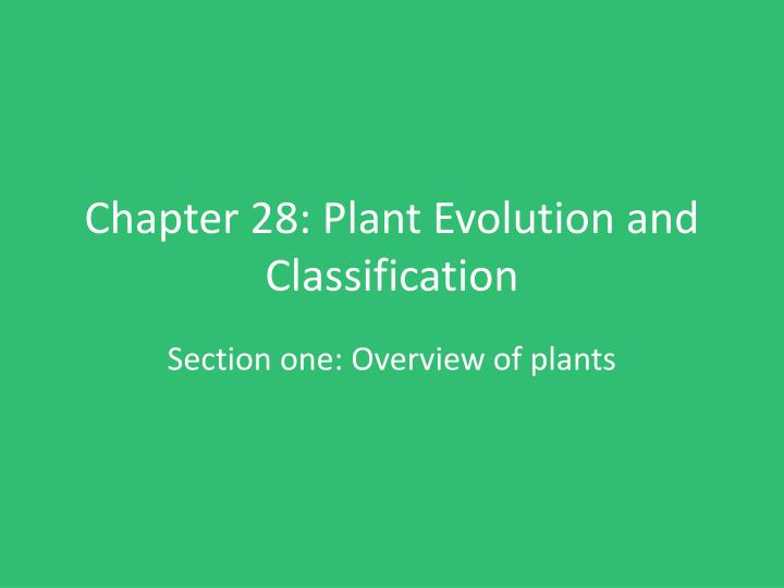 chapter 28 plant evolution and classification n.