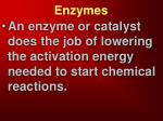 enzymes4