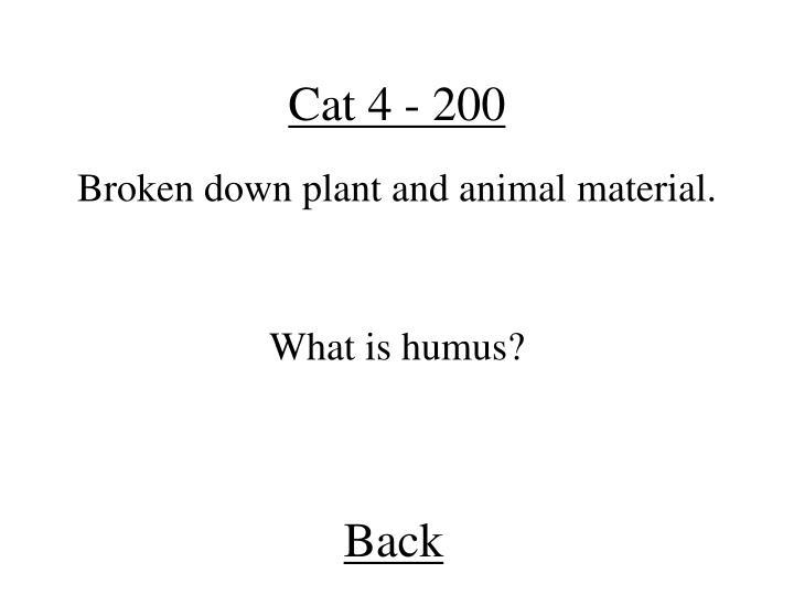 Cat 4 - 200