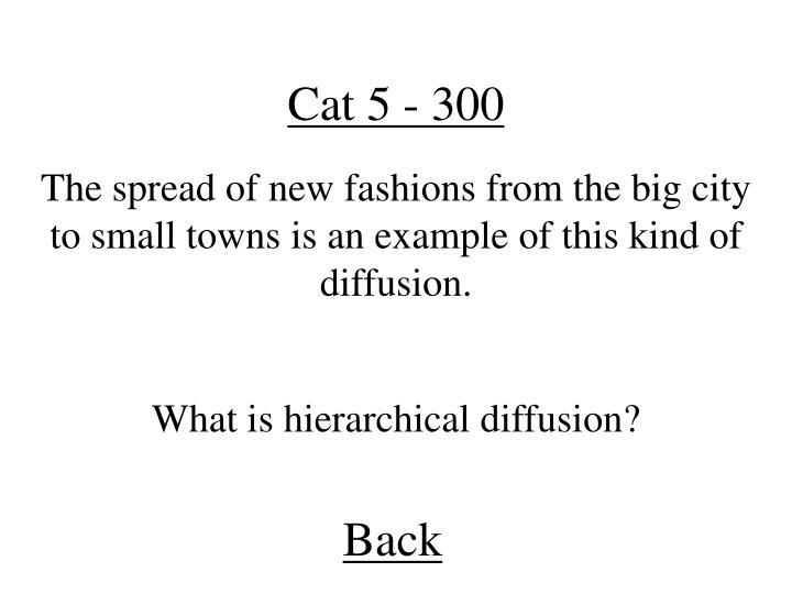 Cat 5 - 300