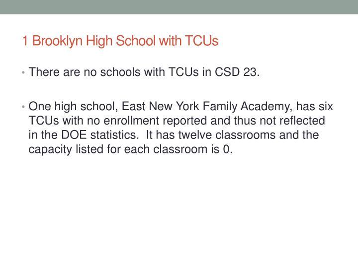 1 Brooklyn High School with TCUs