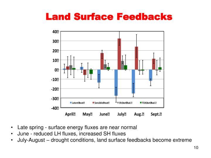 Land Surface Feedbacks