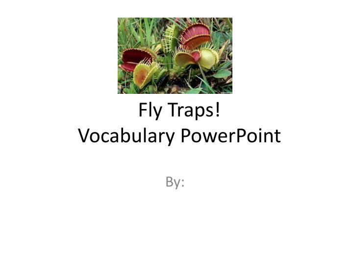 fly traps vocabulary powerpoint n.