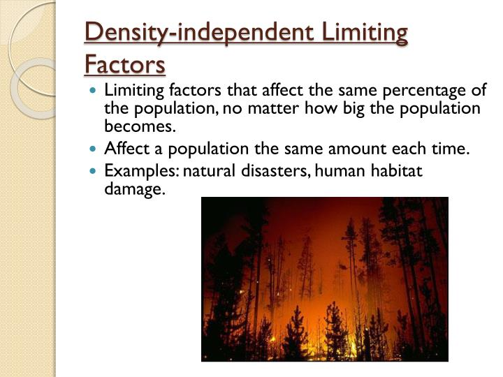 Ppt Interactions In The Ecosystem Powerpoint Presentation Id2456222