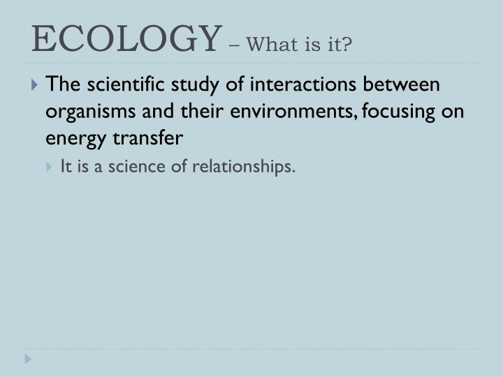 ecology what is it n.