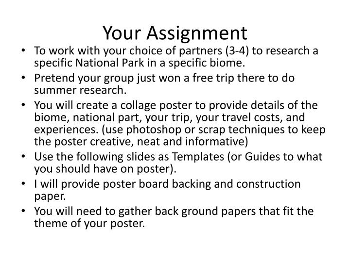 your assignment n.