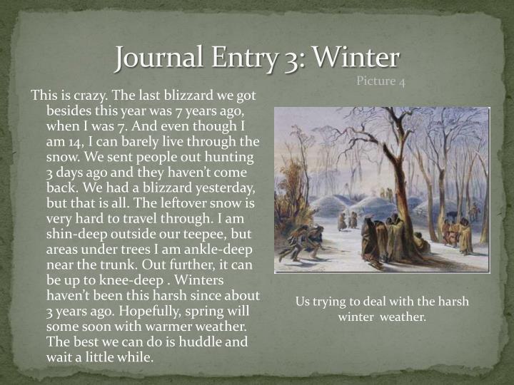 Journal Entry 3: Winter
