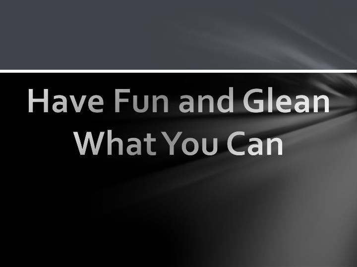 Have Fun and Glean What You Can