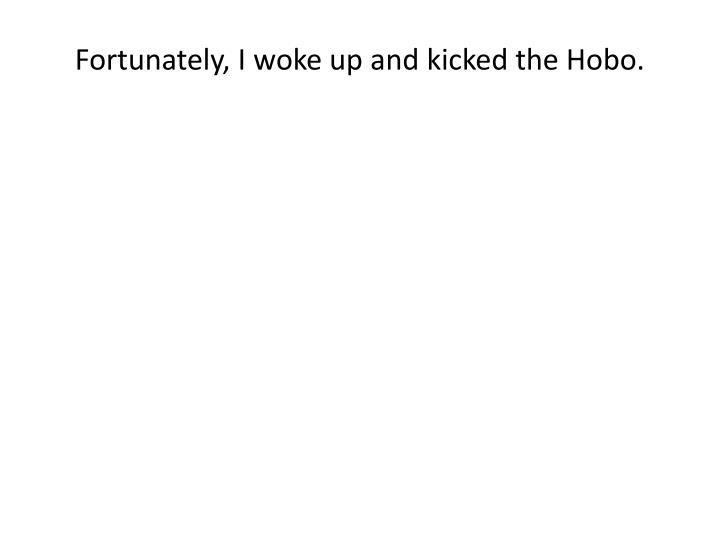 Fortunately, I woke up and kicked the Hobo.