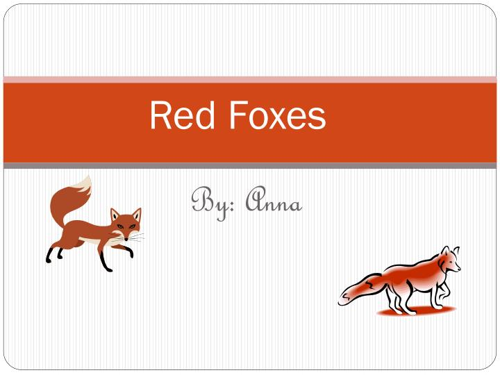 red foxes n.