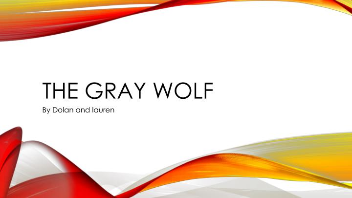the gray wolf n.