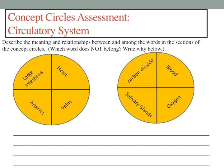 Concept Circles Assessment: