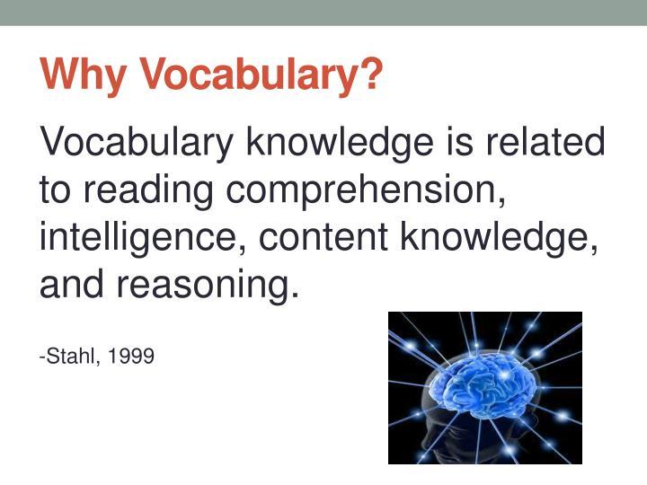 Why vocabulary