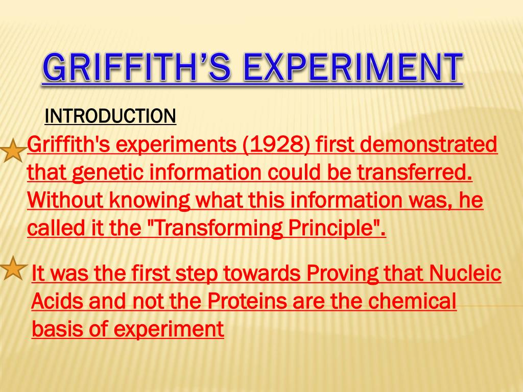 what did frederick griffith discover