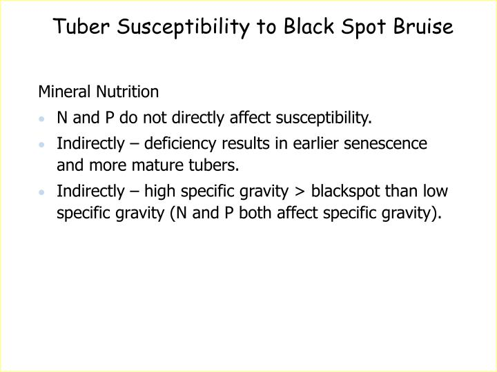 Tuber Susceptibility to Black Spot Bruise
