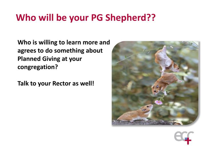 Who will be your PG Shepherd??