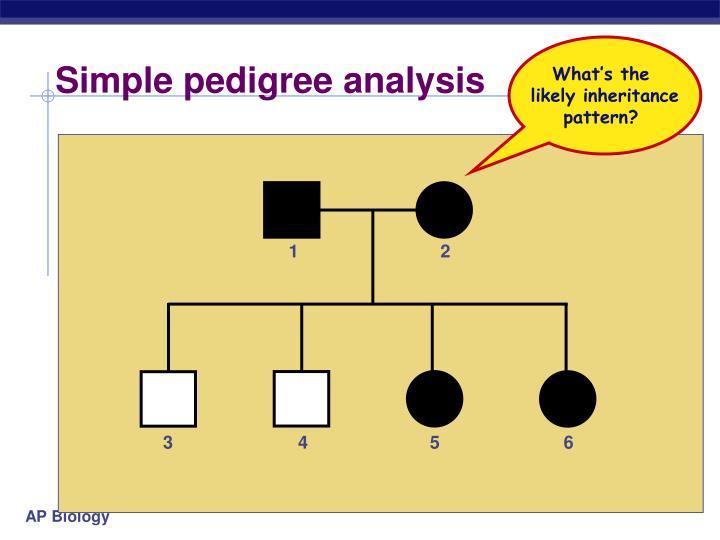 Simple pedigree analysis