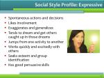 social style profile expressive