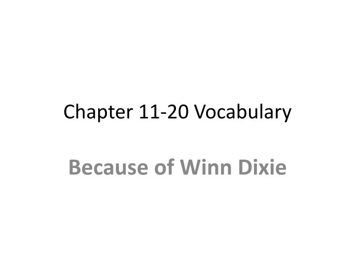 chapter 11 20 vocabulary n.