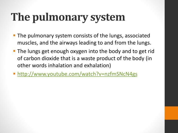 The pulmonary system