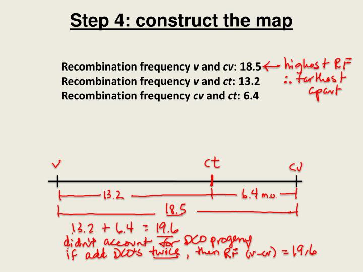 Step 4: construct the map