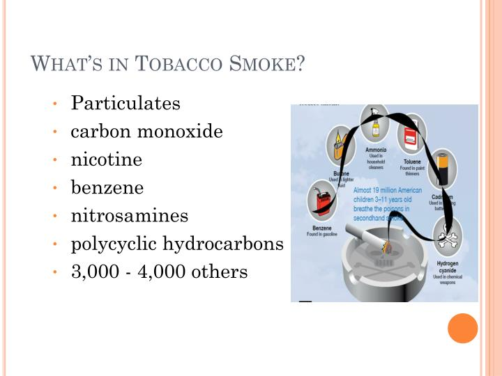 What's in Tobacco Smoke?