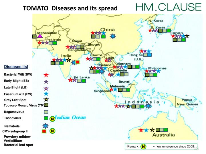 TOMATO  Diseases and its spread