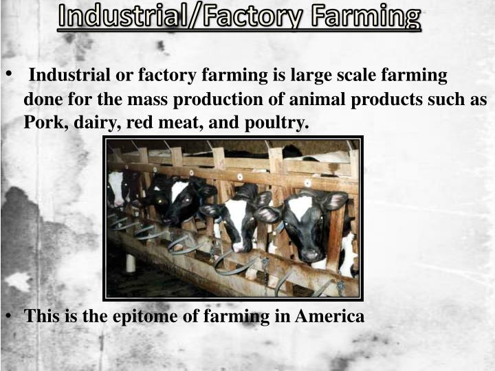 factory farming is acceptable because it is positive for economic growth The market revolution sparked explosive economic  the market revolution encouraged the growth of  unions did not become legally acceptable until.