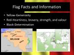 flag facts and information