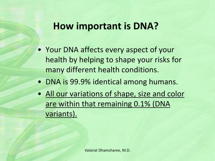 How important is DNA?