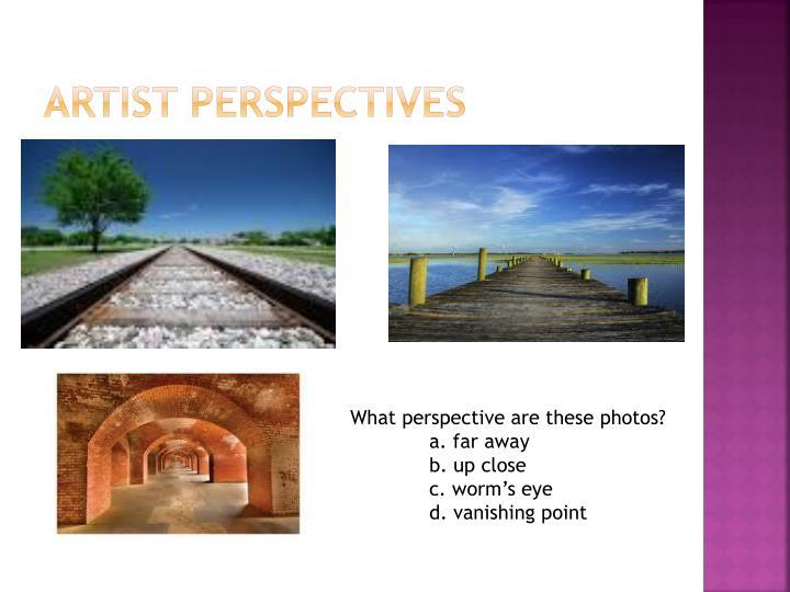 Artist perspectives